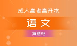 成考高升本语文(真题班)
