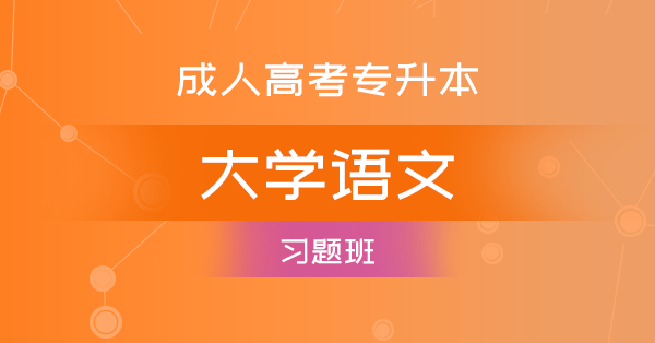 成考专升本大学语文(习题班)