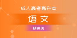 成考高升本语文(精讲班)