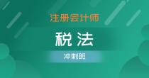 注册会计师-税法(冲刺班)