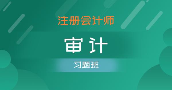注册会计师-审计(习题班)