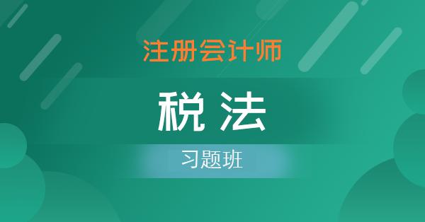注册会计师-税法(习题班)