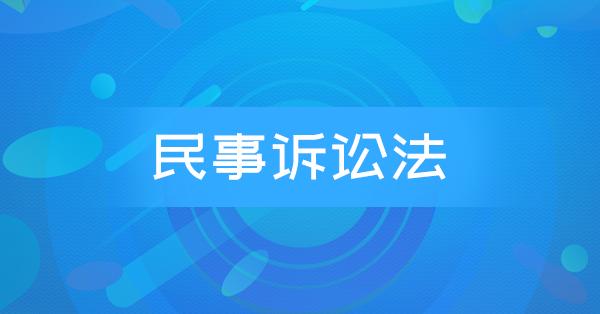 00243 民事诉讼法
