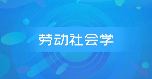 00294 劳动社会学