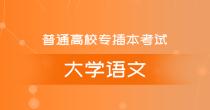 专插本大学语文(精讲班)