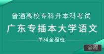 专插本大学语文(单科全程班)