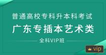 专插本(艺术类)全科vip班
