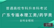 专插本(理工/医药类)全科全程班