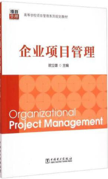 企业项目管理