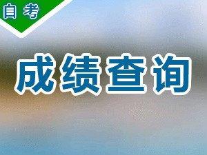 2018年1月广东省自学考试成绩将于2月9日公布