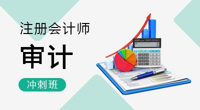 注册会计师-审计(冲刺班)