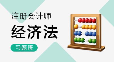 注册会计师-经济法(习题班)