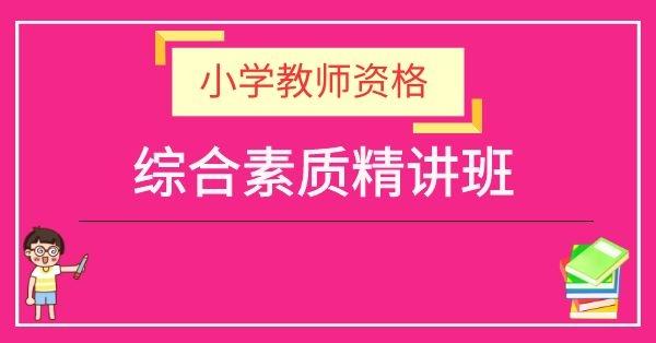 小学教师资格证-小学综合素质(教材精讲班)