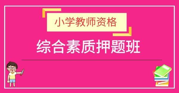 小学教师资格证-小学综合素质(冲刺押题班)