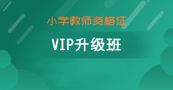 小学VIP升级班
