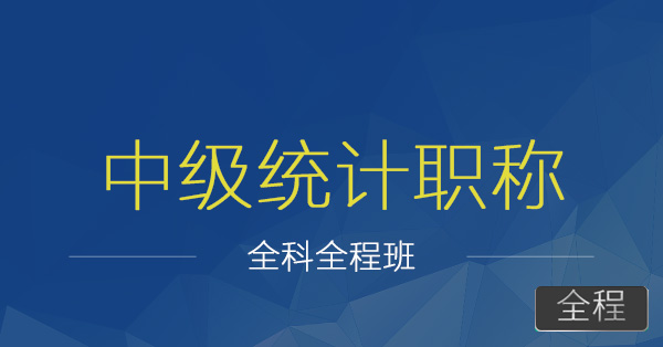 中级统计师职称-胡迪+陈龙
